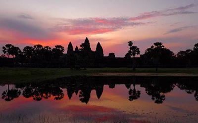 Angkor Wat December 2019 Bird Counts