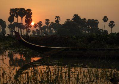 Wild Siem Reap