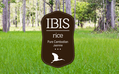 The IBIS Rice Story