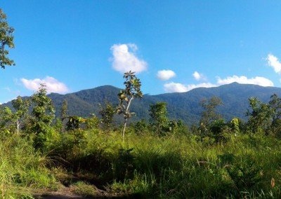 Cardamom Mountains and Southern Cambodia