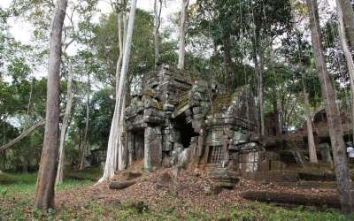 Best Ancient Temples for Birding in Cambodia