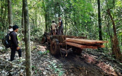 Update from Jahoo and deforestation in Keo Seima Wildlife Sanctuary