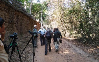 Birdtour Asia: Cambodia and Laos Trip Report 2020
