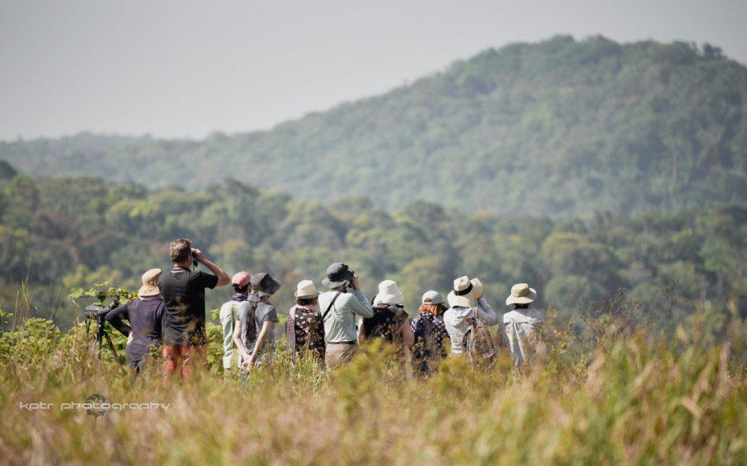 Birding at Bokor National Park